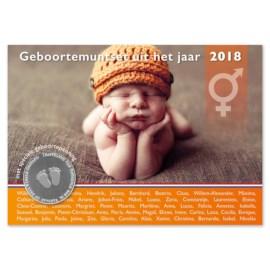 Geboorteset 2018 Neutraal