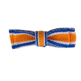 Draaginsignes Oranje-Nassau Lid Dames