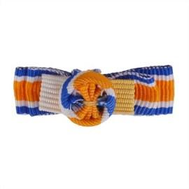 Draaginsignes Oranje-Nassau Grootofficier Dames